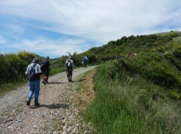 Domenica 9 aprile: passeggiata con il cai, sentiero Luca Ghini